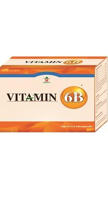 vitamin6b-dptrangminh