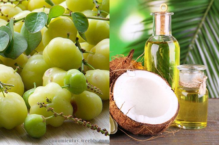 Kết hợp chùm ruột và dầu dừa để trị tóc bạch sớm