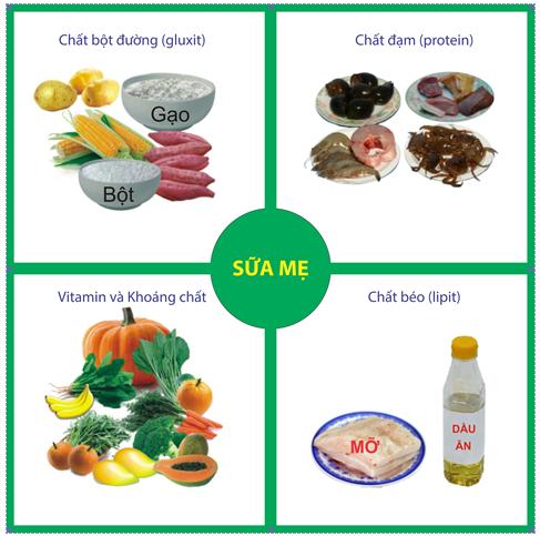 Ô vuông dinh dưỡng cho trẻ dưới sáu tháng tuổi - Dược phẩm Trang Minh - Dược phẩm Trang Minh